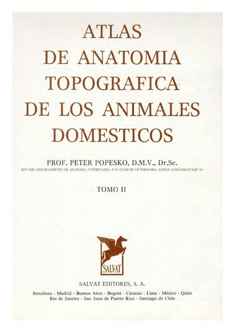 Anatomia Topografica Pdf
