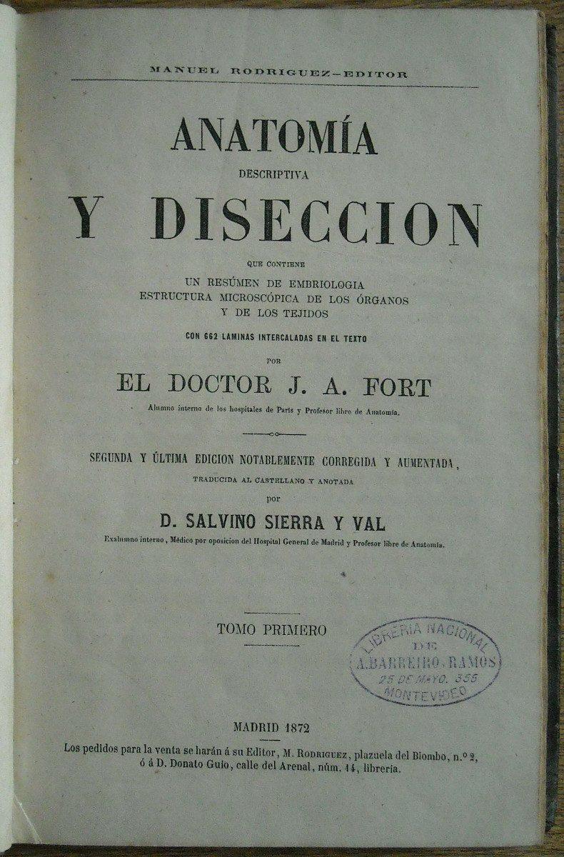 Anatomía Y Disección. Madrid 1872. Libro Con 662 Grabados - $ 850,00 ...