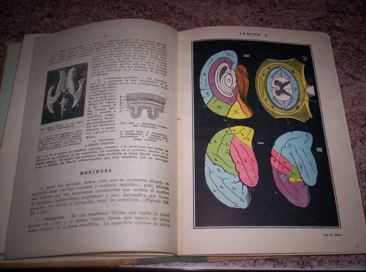 Anatomía Y Fisiología 4to Año / A. Casenave / Año 1964 - $ 150,00 en ...