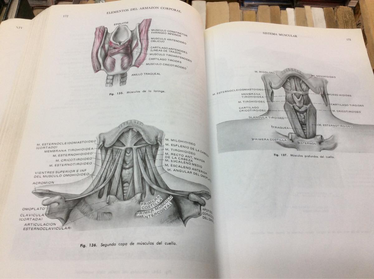Anatomía Y Fisiología Humana - Jacob Francone Lossow - 4 Ed ...