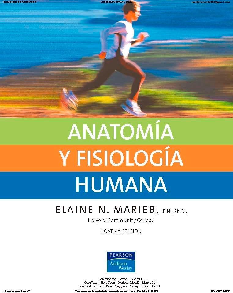 Atractivo Anatomía Y Fisiología Humana Edición Marieb Sexto Regalo ...