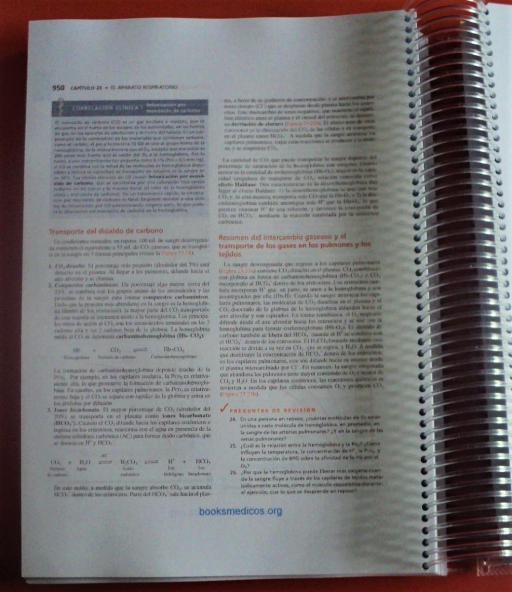 Excepcional Anatomía Animal Y Hojas De Trabajo Fisiología Festooning ...