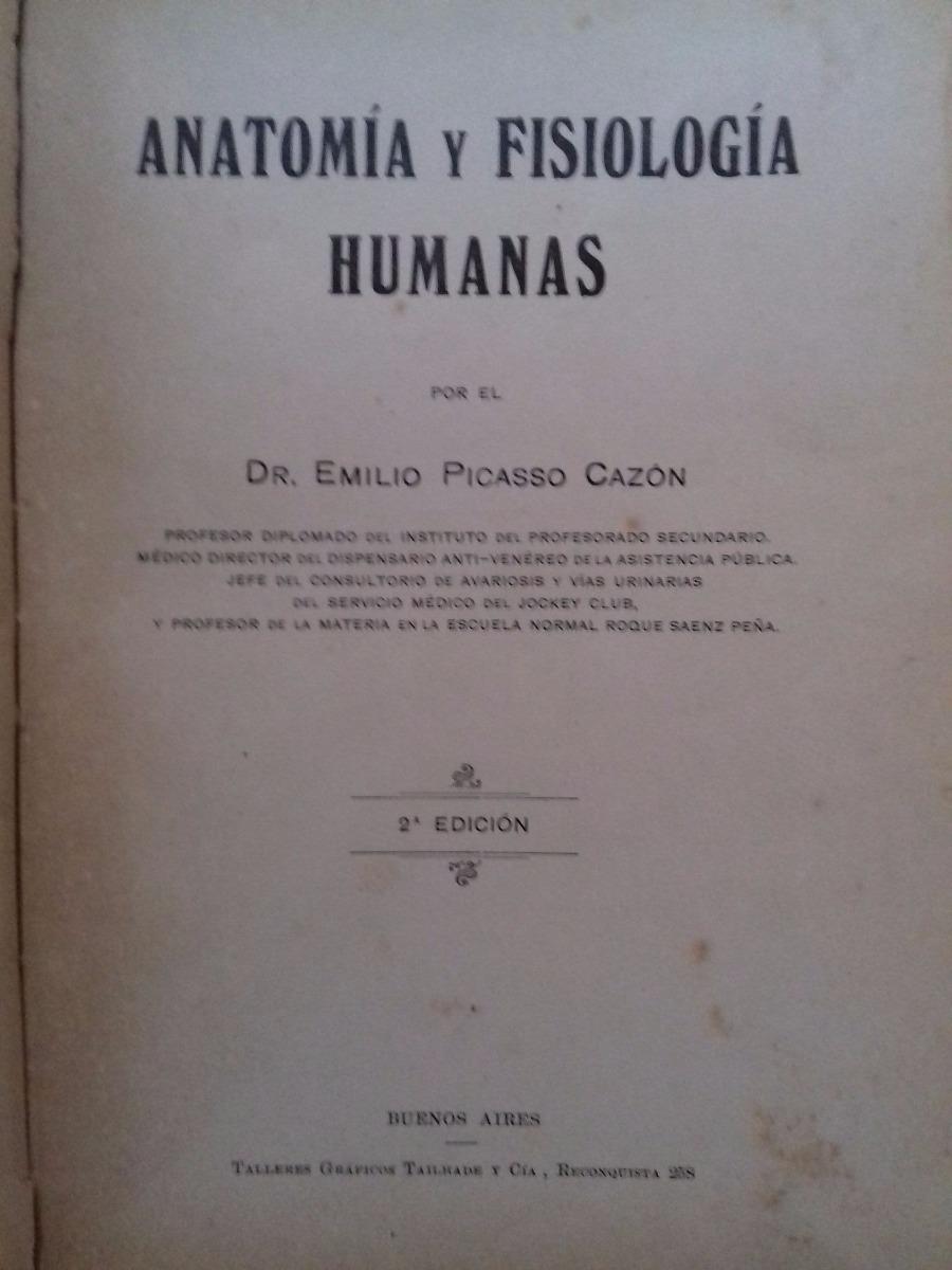 Excepcional Anatomía Externa De Tiburón Cazón Viñeta - Imágenes de ...