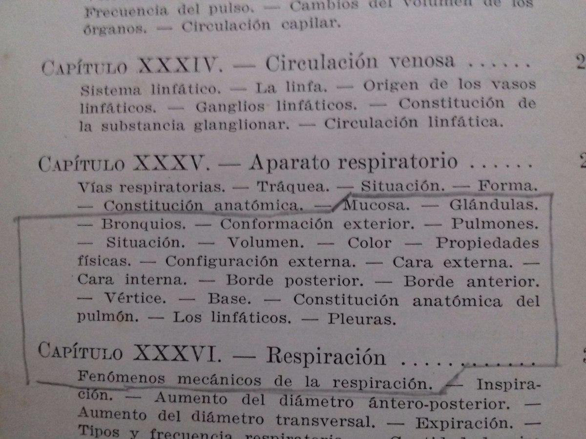 Perfecto Anatomía Interna Cazón Regalo - Anatomía de Las Imágenesdel ...