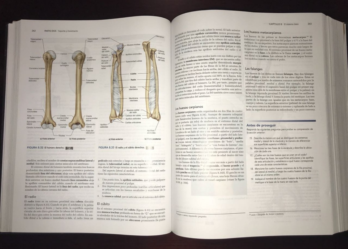 Anatomía Y Fisiología Saladin. La Unidad Entre Forma Y Fun ...