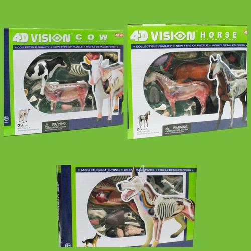 anatomias do cavalo, vaca e cachorro - 4d master