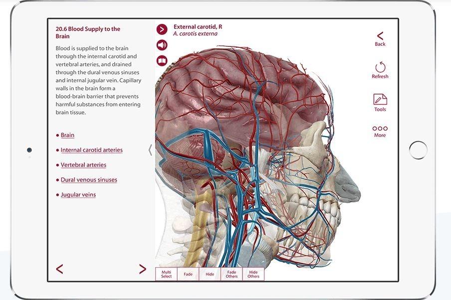 Anatomy & Physiology Visible Body Pro® - $ 12.000 en Mercado Libre