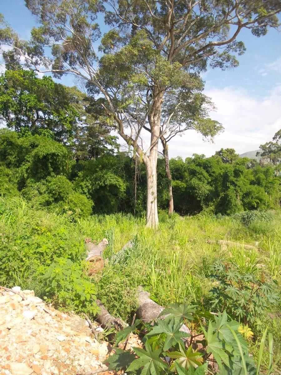ancoven premiun vende terreno en san diego