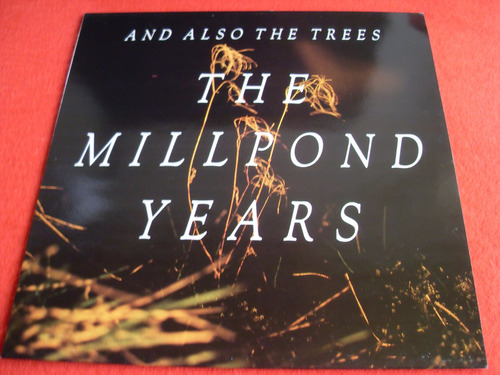 and also the trees  vinyl nuevo
