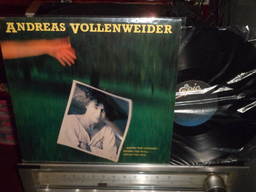 andreas vollenwweider - in the wood