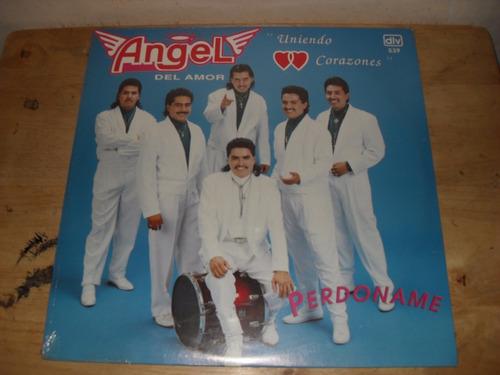 angel del amor lp grupero dlv