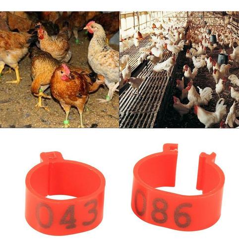 anillos para enumerar aves x 100 piezas. entrega ya!