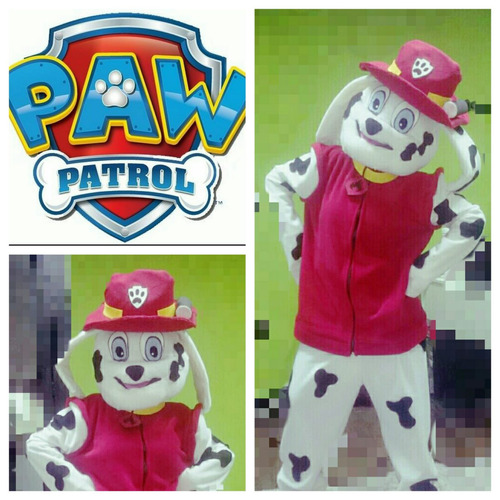 animación infantil,patrulla canina;moana, kermesse,frozen.