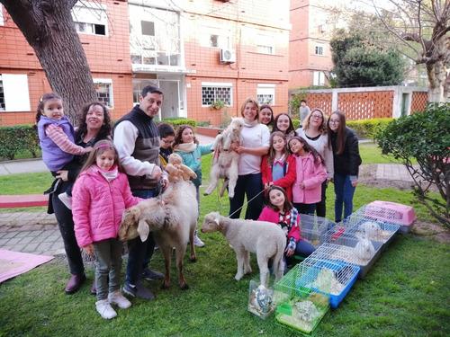 animal friends exhibición y educación animal, animción