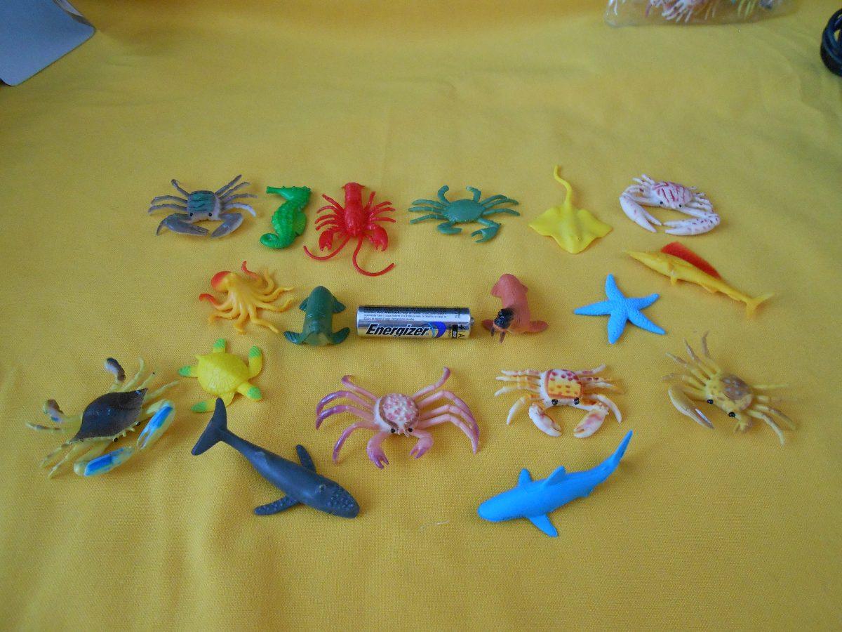 Animales marinos figuras maqueta o coleccion 18 for Cuanto sale hacer una pileta de natacion