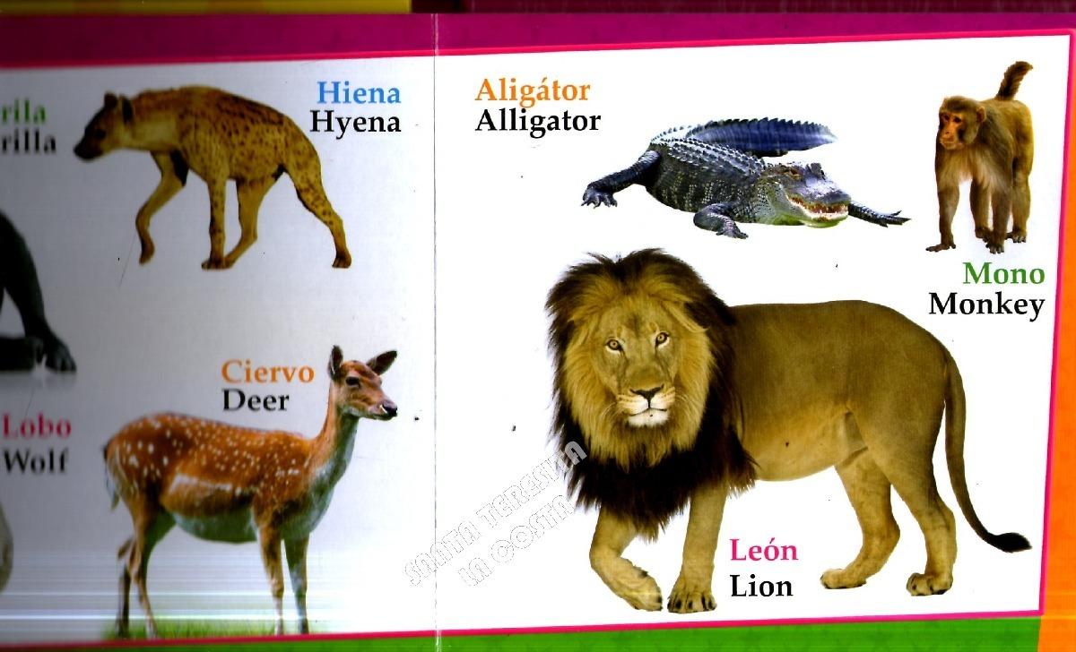 Animales Salvajes De Granja En Español Inglés Lote X2 Libros - $ 290 ...