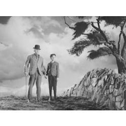 animeantof: dvd que tan verde era mi valle - 1941 m. o'hara