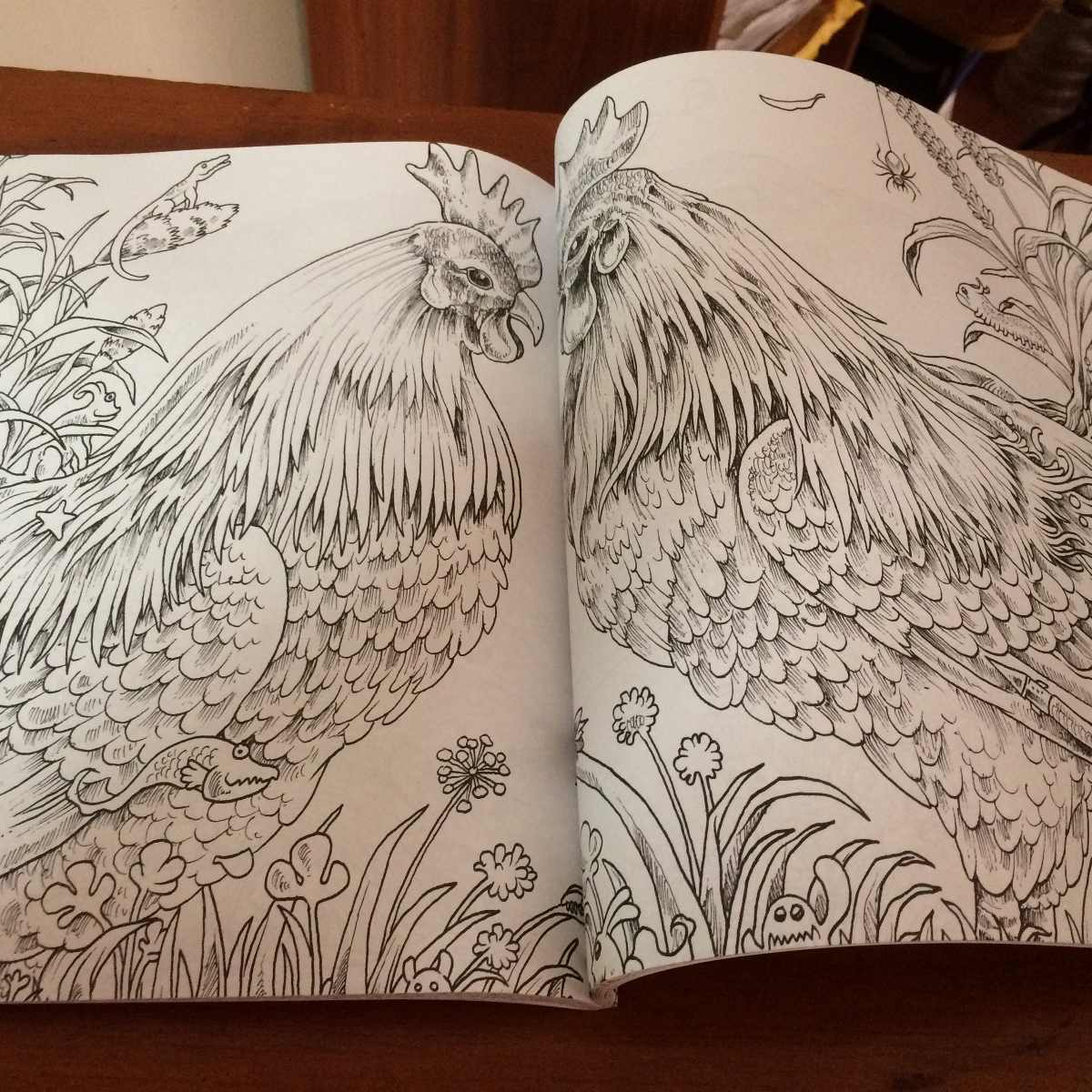Animorphia Libro Para Colorear Adultos Anti Estress - S/ 60,00 en ...