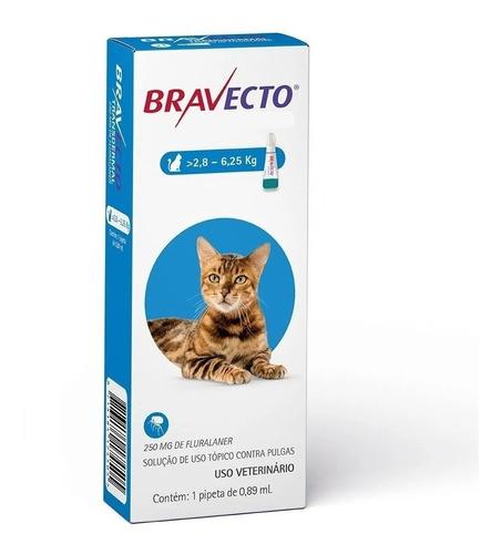 anti pulgas gato