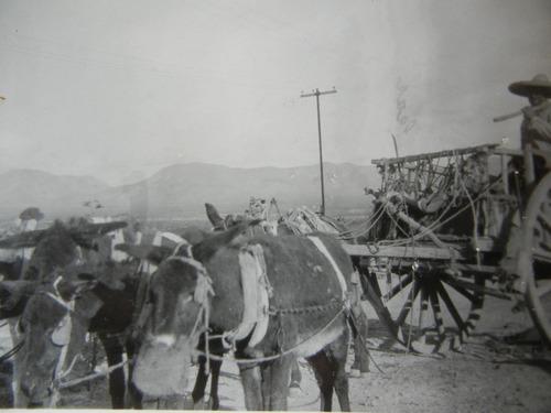 antigua fotografía  camino a peñón blanco durango