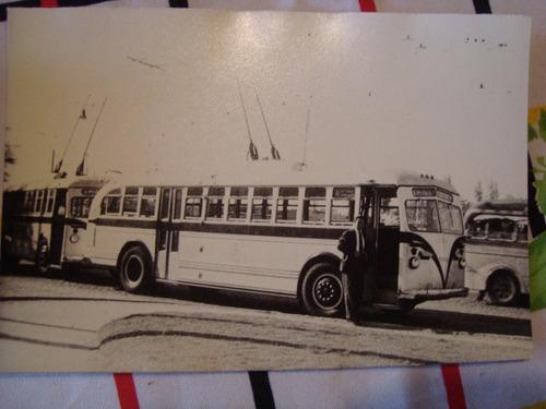 antigua fotografía colectivo 18x12 cm