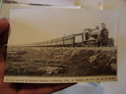 antigua fotografía tren d hacienda laboulaye 11x7 cm.