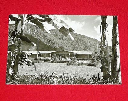 antigua postal tingo maría hotel turistas selva swiss foto