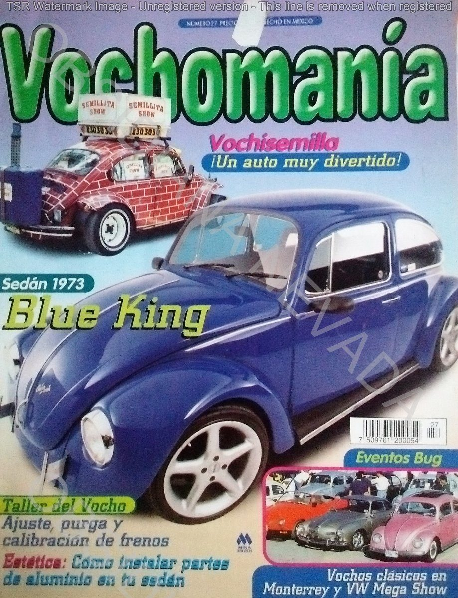 vochomania revista