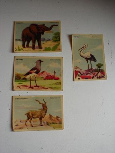 antiguas figuritas de colección / aves y mamiferos