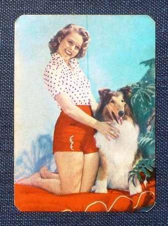 antiguo calendario de bolsillo 1976 lava quick lima perro