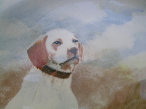 antiguo plato royal doulton colorido motivo perros