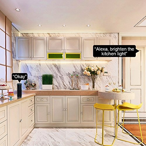 APP Wifi Remote Control Light Anywhere Antopm Smart Dimmer Switch No Hub Required Single-Pole Only Compatible with Alexa and Google Assistant Smart Switch-1 Easy to Install Schedule Timer Scene Mode