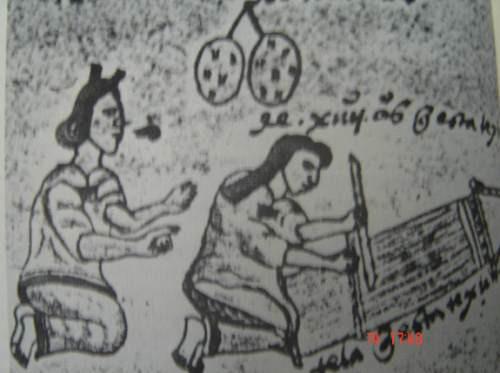 antropológía nº8  instituto mexiquense de cultura