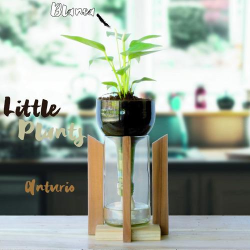 anturio little plant 24 con soporte, maceta autorregante