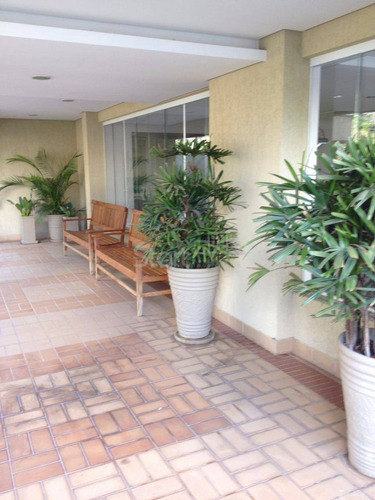 apartamento á venda e para aluguel em cambuí - ap003307