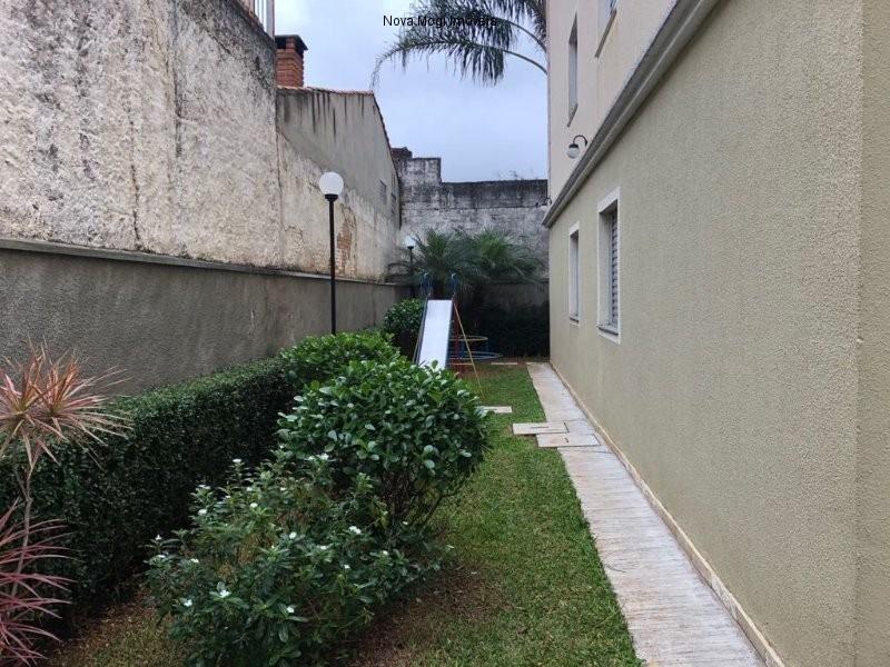 apartamento - ap00035 - 33677699