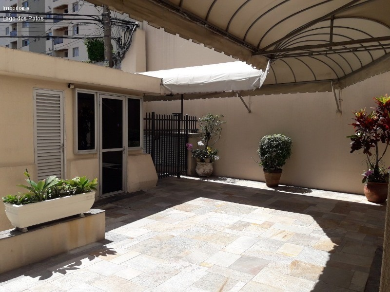 apartamento - ap00251 - 33120157