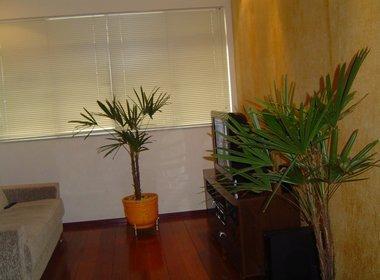 apartamento com 3 quartos para comprar no buritis em belo horizonte/mg - 1132