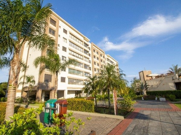 apartamento em cavalhada com 3 dormitórios - mi270652