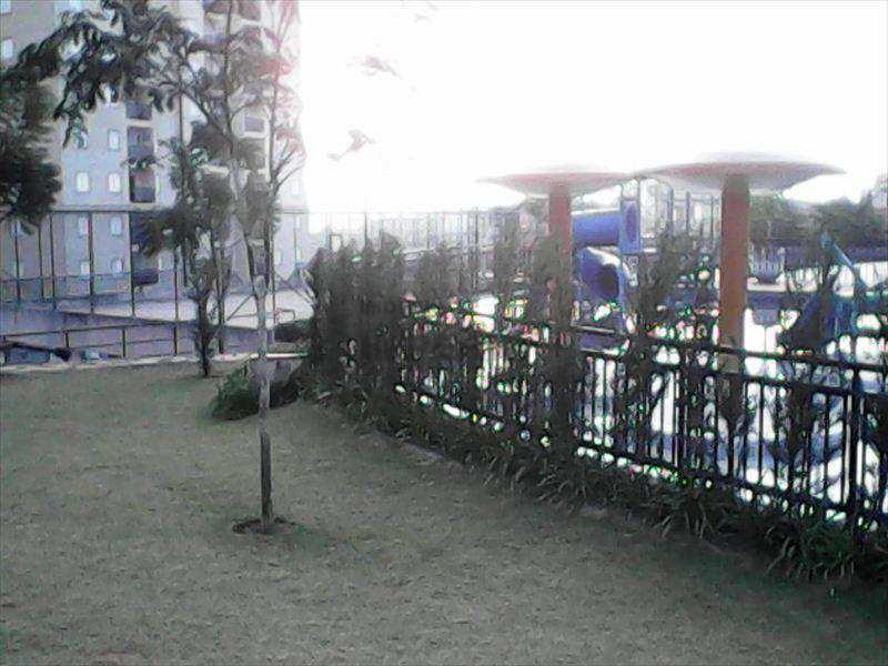 apartamento em guarulhos bairro jardim albertina - v518