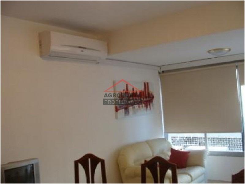apartamento en peninsula, 1 dormitorios *-ref:1523