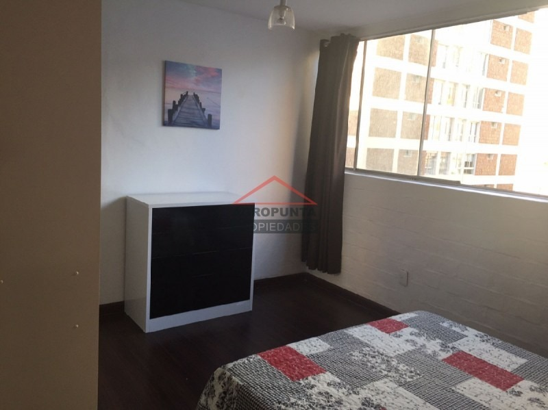 apartamento en peninsula, 1 dormitorios *-ref:2835