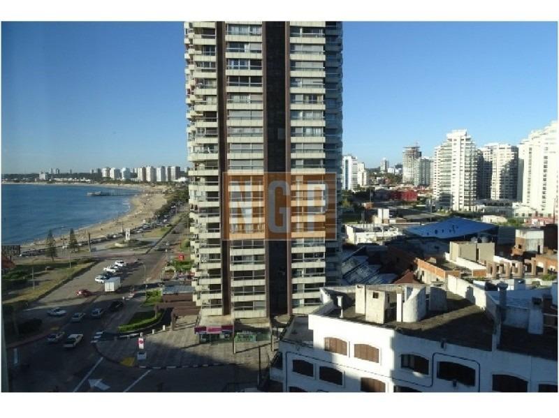apartamento en peninsula, 3 dormitorios  -ref:1416