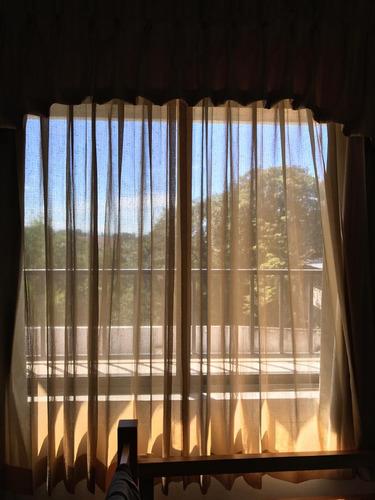 apartamento en renta edif balcones de las charcas