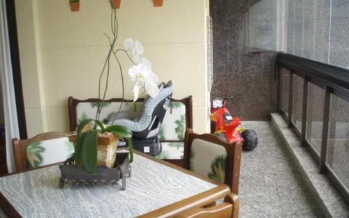 apartamento impecável, mude já!  morumbi -  são paulo.