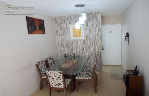 apartamento - jardim dos pimentas - ref: 17572 - v-17572