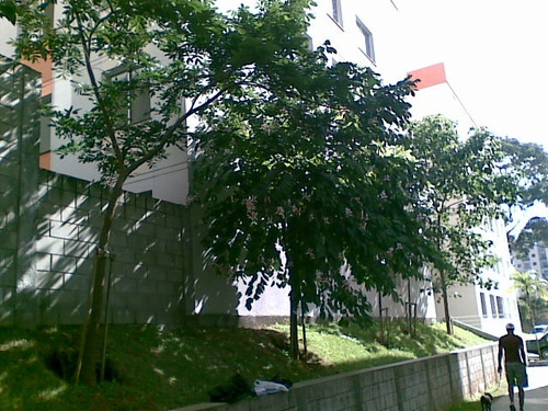 apartamento, jardim n. s. do carmo, 2 dormit. cod. 2238