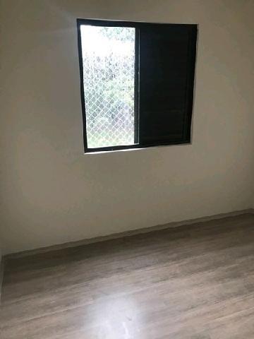 apartamento residencial à venda, vila jardini, sorocaba - . - ap0206