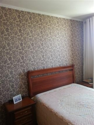 apartamento residencial à venda, vila nova cachoeirinha, são paulo - ap0251. - ap0251