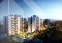 apartamento - sao joao - ref: 219074 - v-219074
